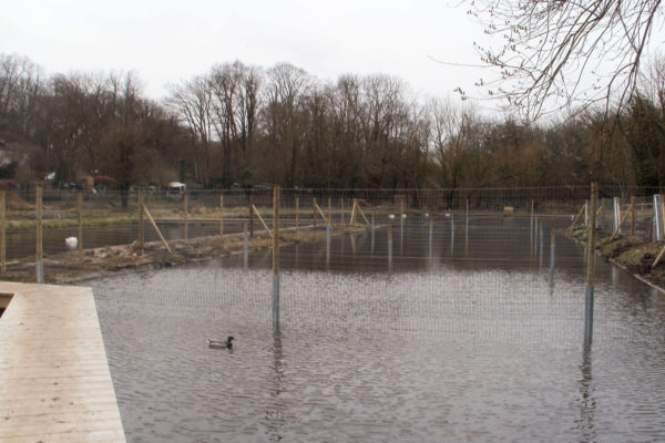 Deer netting fence in water 3