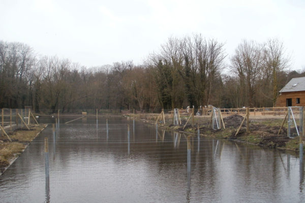 Deer netting fence in water with gates 2